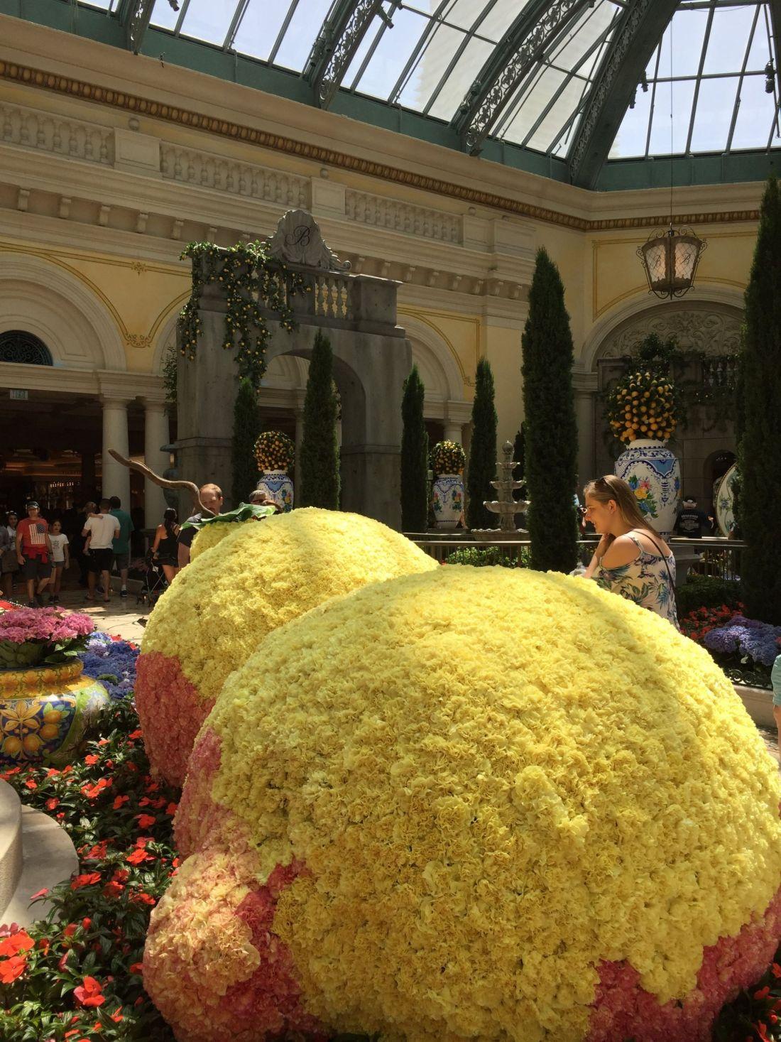 Bellagio Gardens, Las Vegas