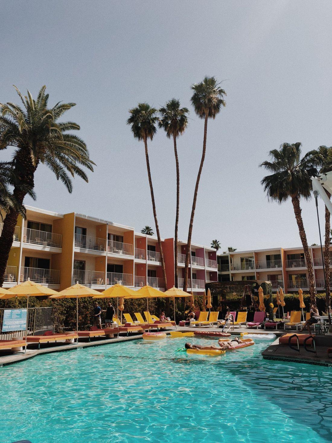 Saguaro, Palm Springs