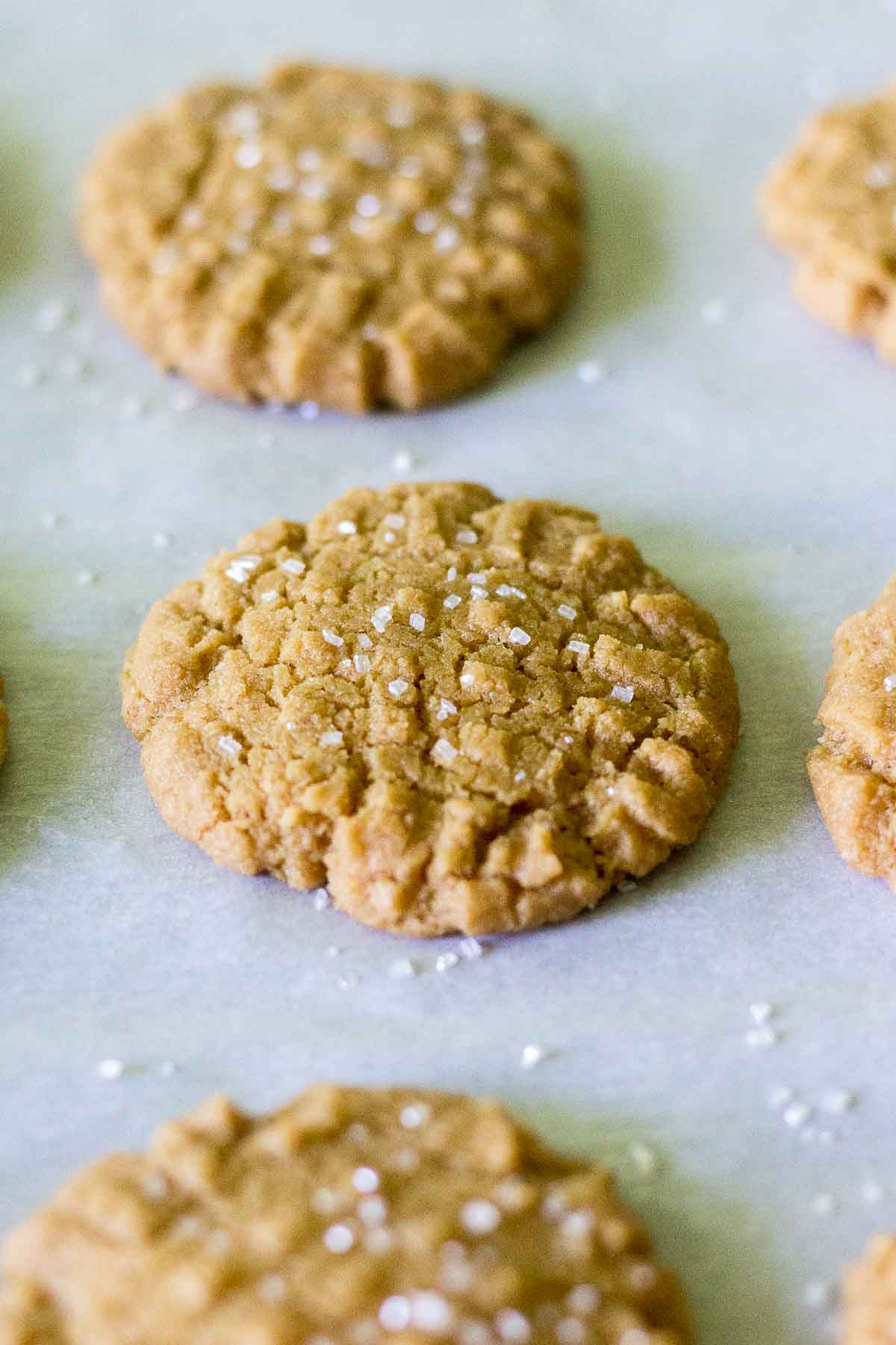 Flourless Peanut Butter Cookies What Molly Made