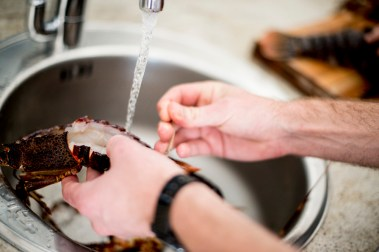 Cleaning crayfish