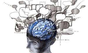 Odkryto przebieg procesu odtwarzania wspomnienia w mózgu