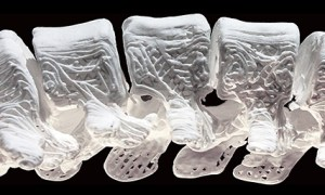 Wydrukowane na drukarce 3D kości z powodzeniem umieszczone w układach kostnych zwierząt