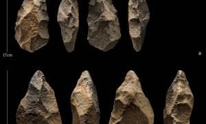 Hominini prawdopodobnie spotkali współczesnych ludzi