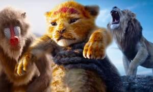 Czy  nowy Król Lew nie będzie kopią oryginału?