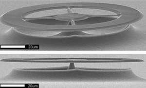 Nowe czujniki ultradźwiękowe wykryją pojedyncze bakterie