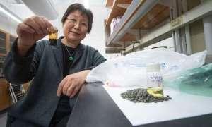 Naukowcy są w stanie przerabiać plastikowe odpady na paliwo