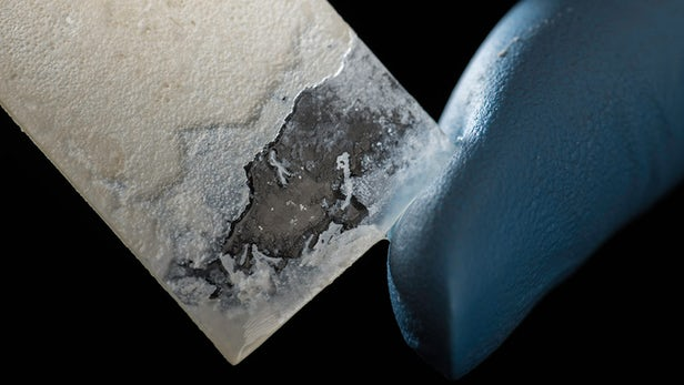 masa perłowa, bakterie masa perłowa, sztuczna masa perłowa, syntetyczna masa perłowa