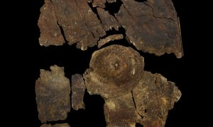 Tarcza z epoki żelaza została wykonana z kory
