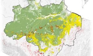 Co wywołuje pożary w Brazylii?