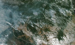 Wylesianie może potęgować pożary lasów deszczowych w Amazonii