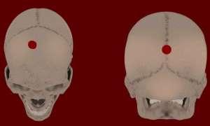 Skąd się wzięły te cztery tajemnicze czaszki w byłej wiosce Inków?