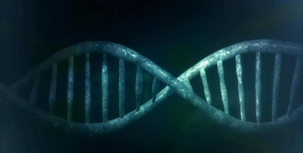 CRISPR, narzędzia CRISPR, cas9 CRISPR, odkrycie CRISPR, on/off CRISPR, podejście CRISPR,