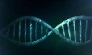 """Nowe narzędzie zamienia CRISPR w """"szwajcarski scyzoryk"""""""