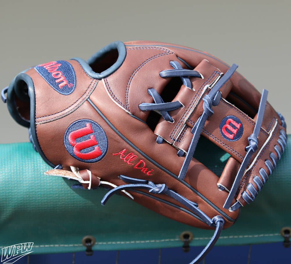 Dansby Swanson Glove 4