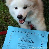 Proud Puppy