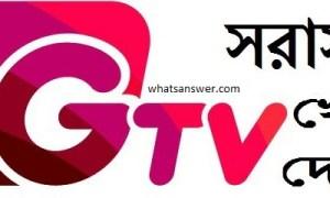 Watch Gtv Live cricket | Gazi tv live cricket streaming online | Gtv live channel BD