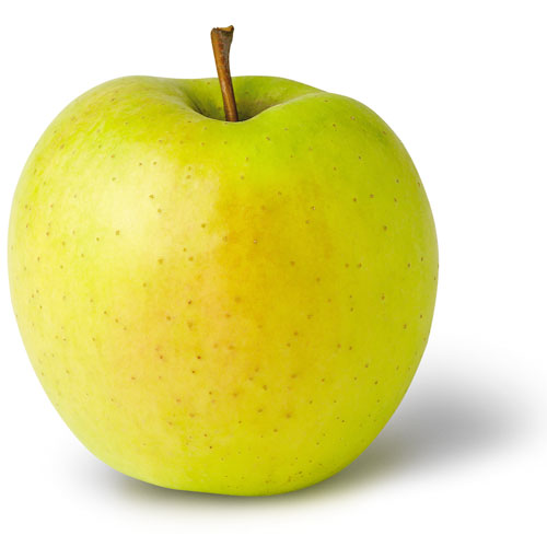 State Fruit Of West Virginia