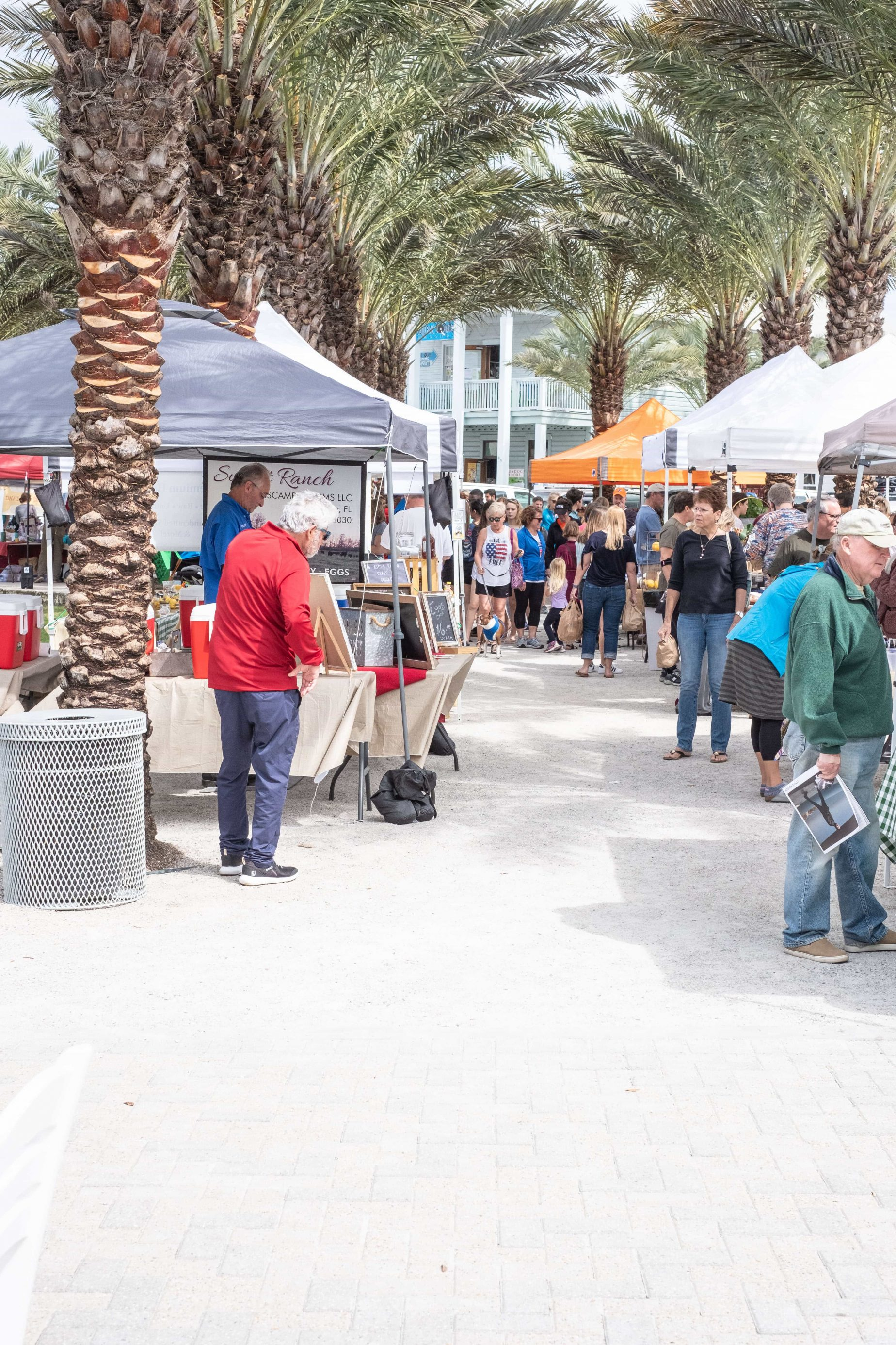 Seaside Farmers Market- What You Need To Know #whatsavvysaid #30a #seasideflorida #farmersmarket #sunnysaturday #visitflorida #farmersmarketfinds