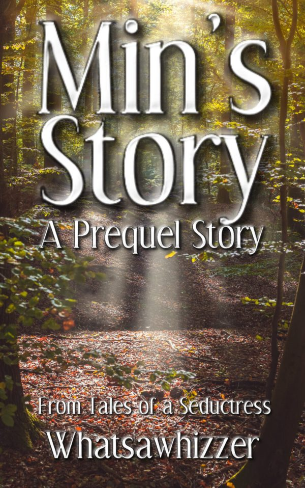 Min's Story Cover