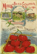 Mills seed catalogue, 1901