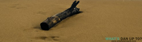 Log-on Sand