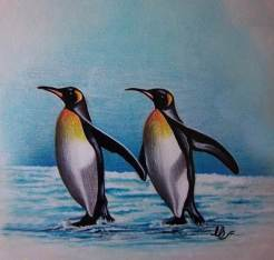 penguin-art-by-lakshman-bala