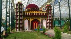 republic-day-flower-show-january-2017-at-glass-house-lalbagh-bengaluru-18