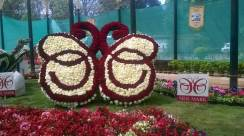 republic-day-flower-show-january-2017-at-glass-house-lalbagh-bengaluru-21