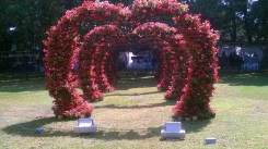 republic-day-flower-show-january-2017-at-glass-house-lalbagh-bengaluru-34