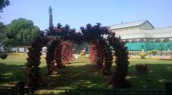 republic-day-flower-show-january-2017-at-glass-house-lalbagh-bengaluru-37