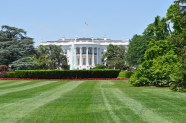 The back yard at the White House