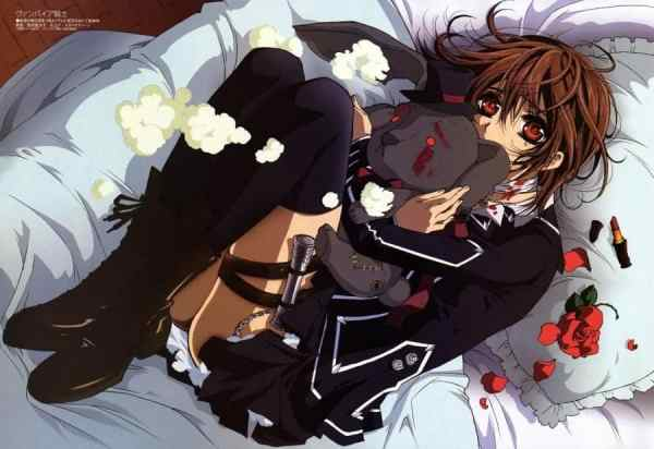 VAMPIRE KNIGHT ANIME REVIEW: ACTION & ROMANCE