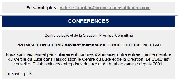promiseconsulting, panelontheweb, luxurylab, newsletter, juin, 2019, marketing, etudes