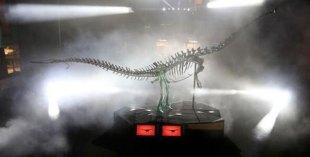 Dubai Mall dinosaur named DubaiDino