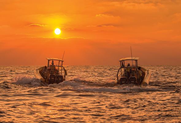 Yellow Boats night tour