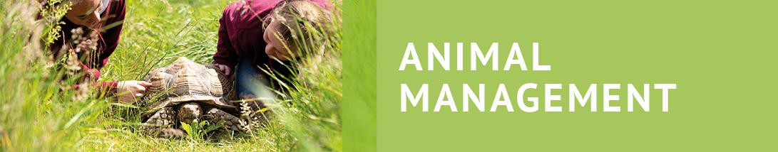 01251_Saturday_Academies_1091x214_ANIMAL