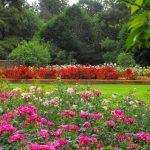 Johannesburg Botanical Gardens & Emmarentia Dam