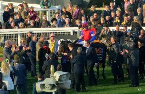 Cost Owning Racehorse
