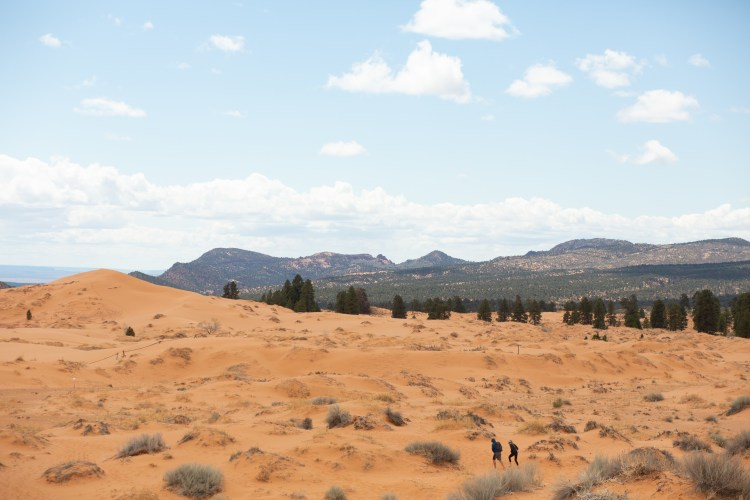 hiking coral pink sand dunes state park