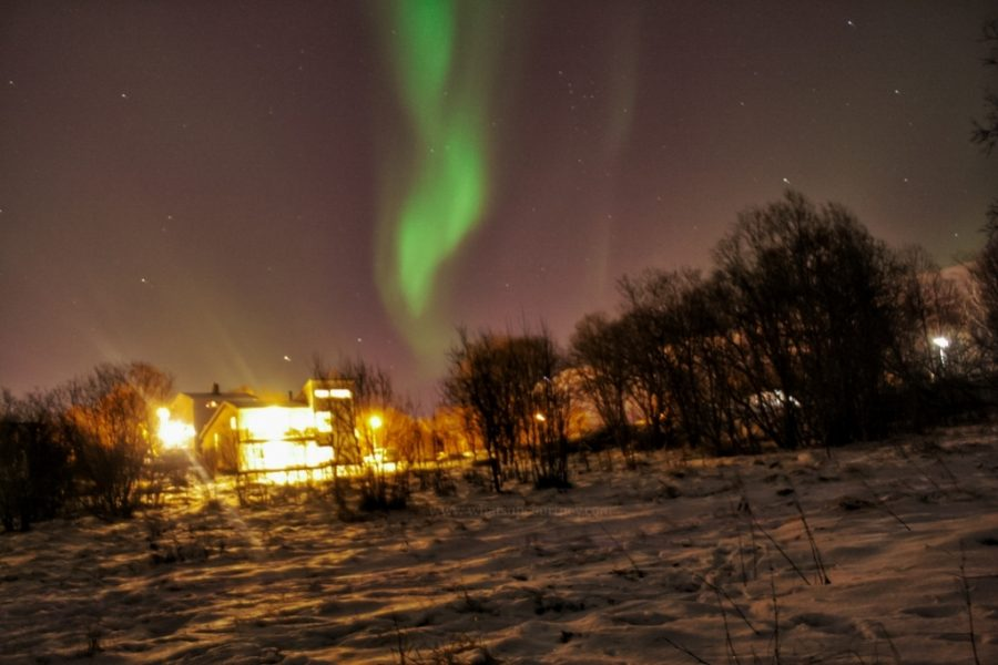 Northern Lights Forecast Tromso Norway