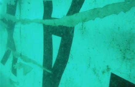 Tail of crashed AirAsia plane discovered in Java Sea