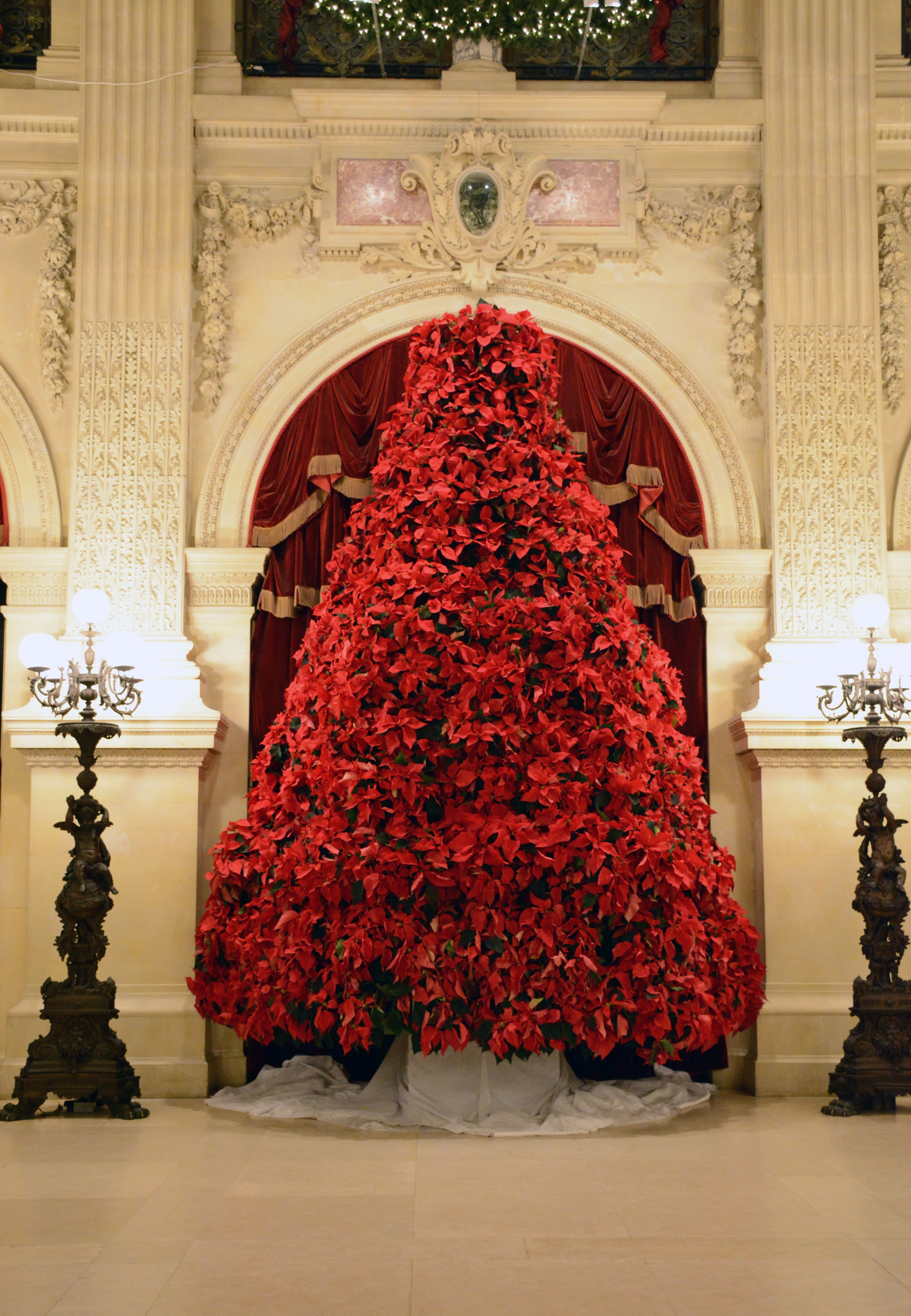 Newport Mansions Christmas 2021 Tickets Now Available For Newport Mansions Christmas Festivities What S Up Newp