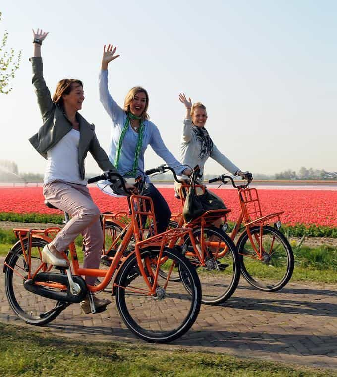 Bike around the flower fields of Holland