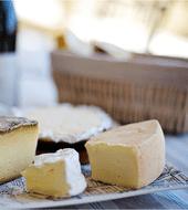 Cheese Amsterdam
