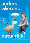 Feeding ducks in Amsterdam differently