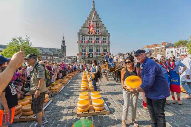 Gouda chees market tour