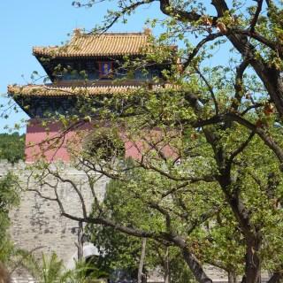 Long Distance Decor – China