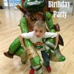 Ninja Turtle Birthday Party Ideas