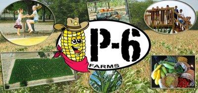P-6 Farms Corn Maze
