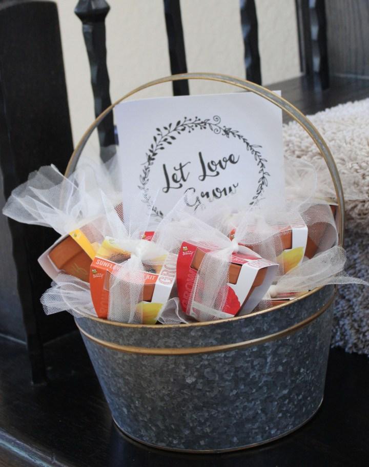 Let love grow - bridal shower favors